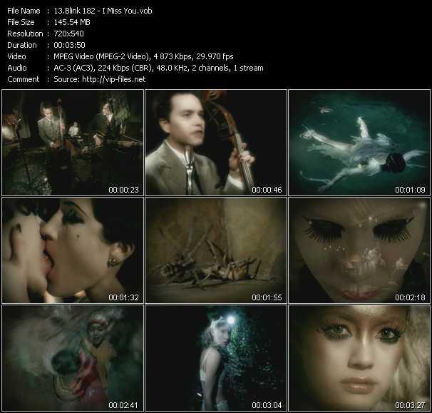 Blink 182 videos. Download blink 182 music video down.